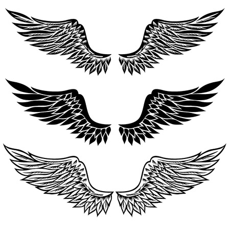 hawks: Set of fantasy stylized wings isolated on white Illustration