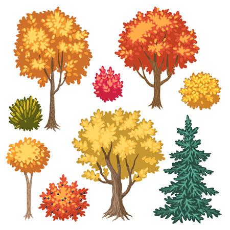 cartoon autumn: Set of cartoon autumn trees and shrubs isolated on white background