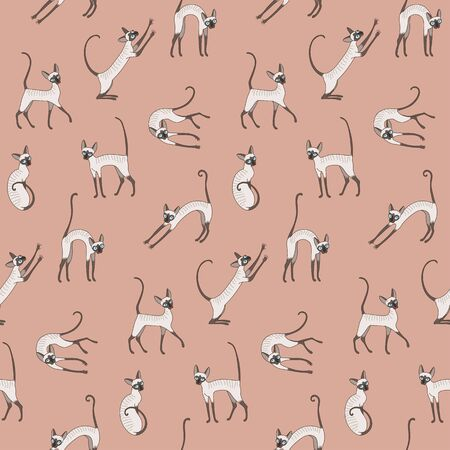 cornish rex: Cute cornish rex cats on pink background. Seamless pattern for your design Illustration