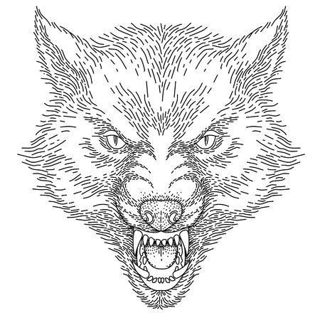 Head of angry roaring wolf, black illustration, isolated on white background  Ilustração