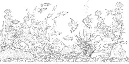 Acuario rectangular horizontal con plantas, accesorios y peces. Ilustración monocromática del paisaje submarino para colorear