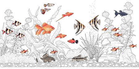 Acuario horizontal rectangular con plantas, accesorios y peces de colores. Ilustración monocromática del paisaje submarino para colorear