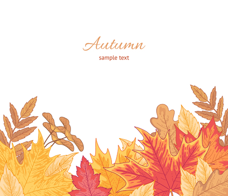 Composition of multicolor fallen leaves of maple, oak and birch on white. Autumn background for your design 일러스트