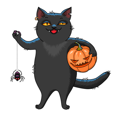 Black cat holding pumpkin and spider. Cartoon character for Halloween isolated on white background Archivio Fotografico - 127271173