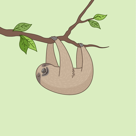 Cheerful sloth hanging on a tree branch. Cute cartoon character
