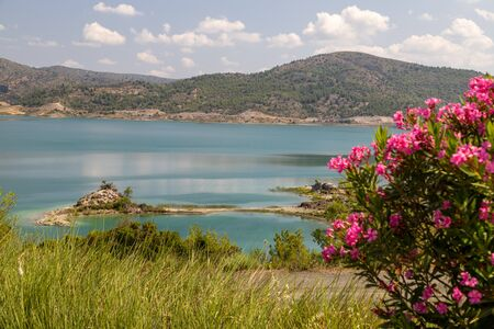 Scenic view at the Gadoura water reservoir on Rhodes island, Greece with blue and turquoise water, pink flowering shrub in the foreground and green landscape around the lake on a sunny day in spring