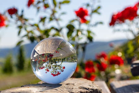 Crystal ball on shale stone with defocused red rose flowers and Moselle valley in background