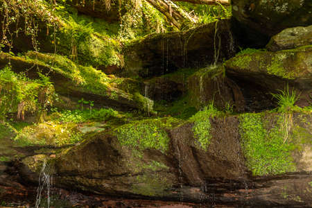 Water flowing over moss covered rocks in the canyon Hexenklamm