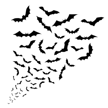 at bat: Swarm of bats on the white background Illustration