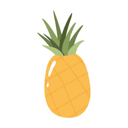Pineapple colorful vector illustration isolated on white background. Hand drawn style, cute doodle art. Agricultural concept. Fruits for gardening. Healthy diet. Ilustración de vector