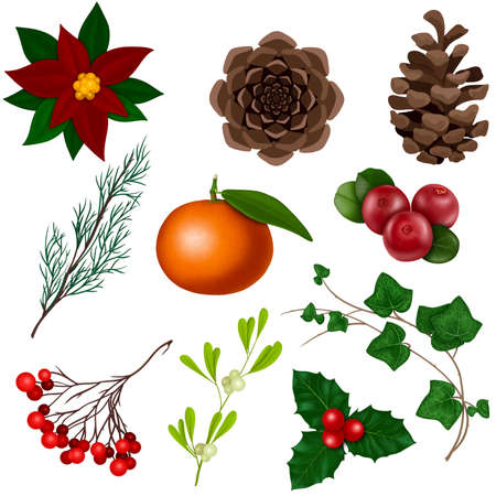 Christmas clipart, winter set. Berries, fruits and plants.