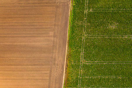 Symmetric aerial photo of tractor tracks in a green field that is separated by a dirt road from a brown arable land in Germany Standard-Bild