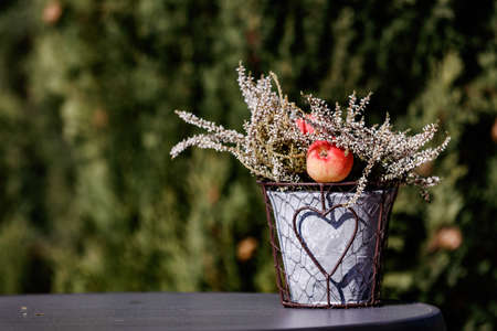 Flower arrangement in a pot with apple against a natural background Standard-Bild