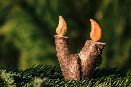 A Christmas candle with a flame made of wood in a fir branch isolated against a natural green background Standard-Bild