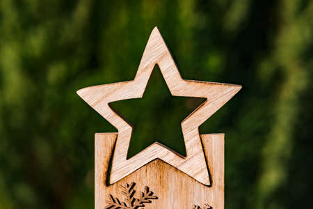 A cut-out wooden star in front of a green natural background serves as a document for Christmas