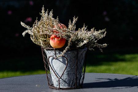 A flower arrangement with apple on a dark background