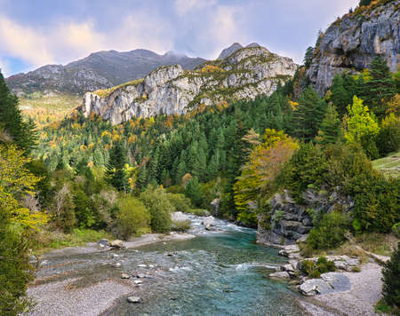 river in a forest at the foot of the mountain on a cloudy day Stock Photo