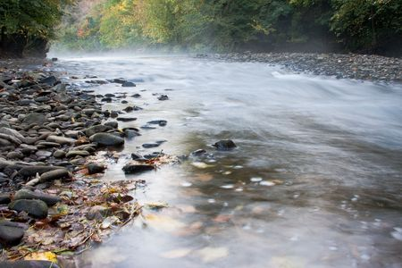Misty stream with autumn colours leaves and pebbles Stock Photo