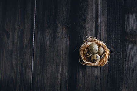 ebony wood: Quail eggs in nest Stock Photo