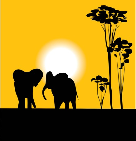 elephants at sunset Vector