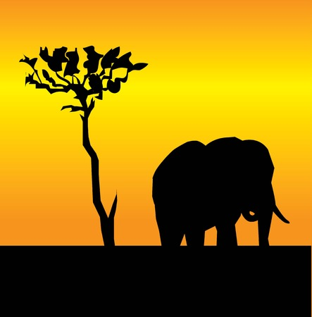 elephant at sunset Stock Vector - 5132733