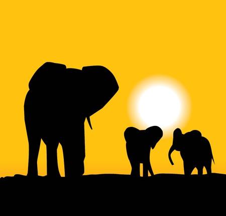 elephant and elephants Stock Vector - 5291245