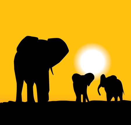 elephant and elephants Vector