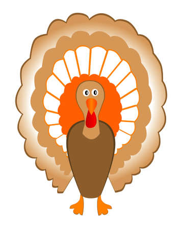 vector turkey Vector