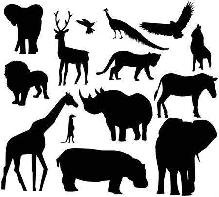 Différents animaux Banque d'images - 6488265