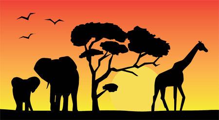 アフリカの風景