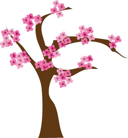 cherry tree in blossom Stock Vector - 6675290