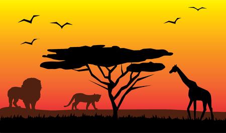 african safari: african landscape Illustration
