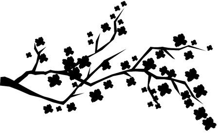 Abstract kersen brunch in bloei Stockfoto - 7283456