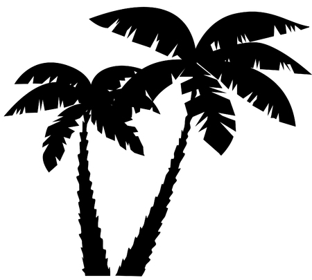 palm: palm silhouettes