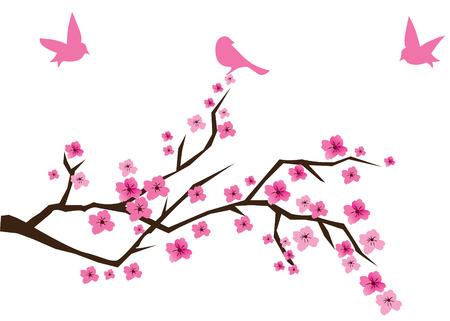 fleur cerisier: cerisier en fleurs avec des oiseaux
