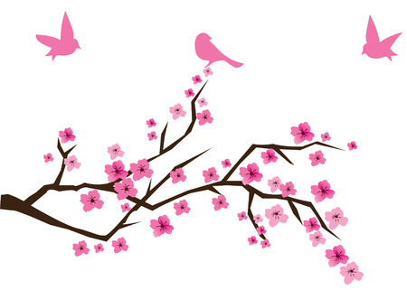 cherry tree in blossom with birds