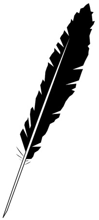 quill pen: black feather