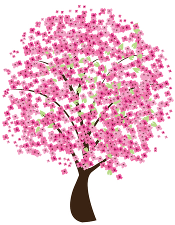 vector cherry tree in blossom Vectores