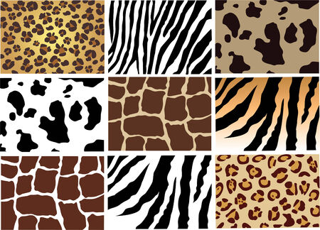 impresion de los animales: piel de un animal