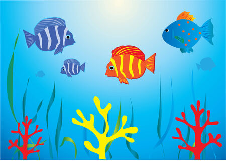 underwater fishes: aquarium with tropical fish Illustration