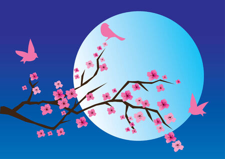 moon flower: cherry branch in blossom with birds