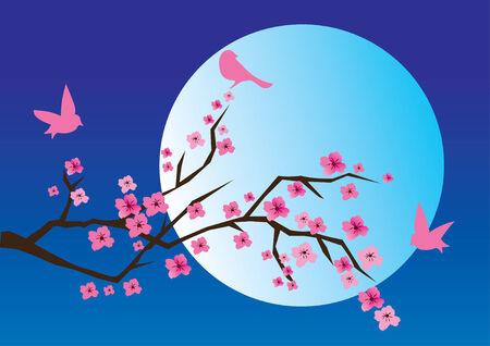ramo di ciliegio: ramo di ciliegio in fiore con gli uccelli