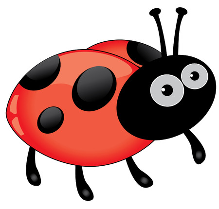 ladybug cartoon: ladybug Illustration