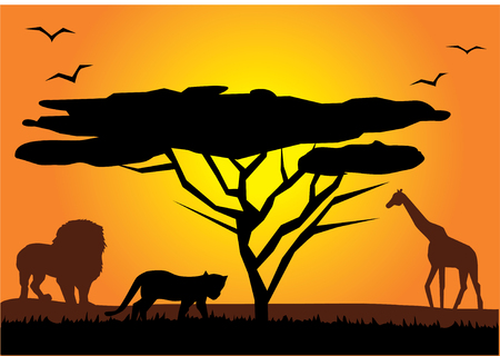 african landscape Illustration