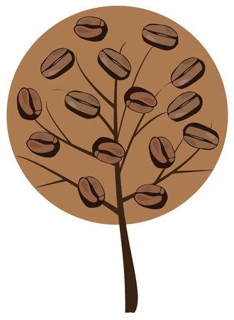 coffee beans: coffee tree
