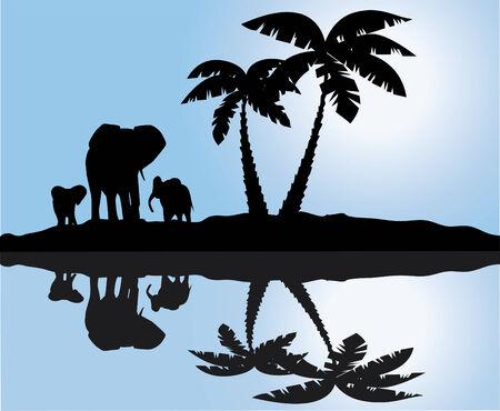 Paysage africain avec réflexion Banque d'images - 7933151