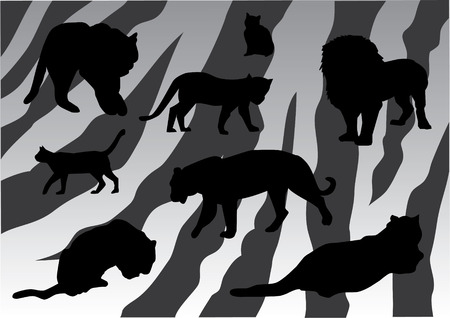 cats on tiger skin background Vector