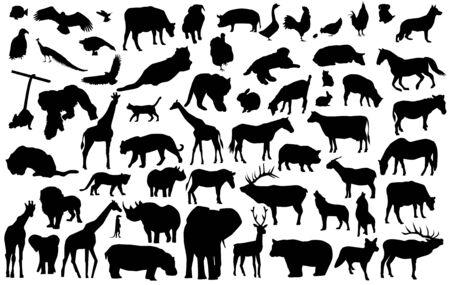 dierlijke silhouetten  Stock Illustratie