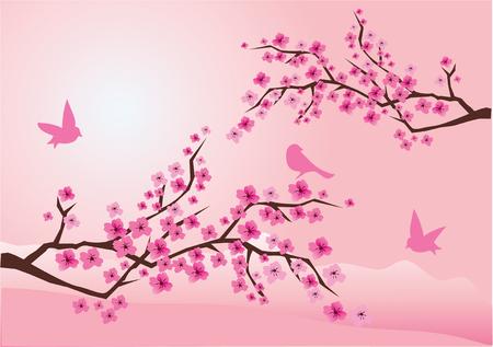 cerisier fleur: fleur de cerisier avec des oiseaux  Illustration