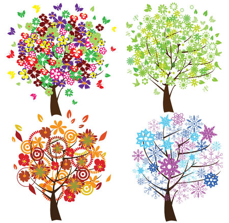 vier verschillende seizoen bomen